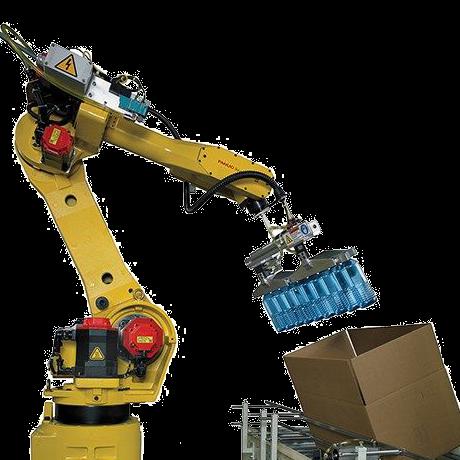 רובוט אריזה לאריזה של אוכל מכונת אריזה קו אריזה